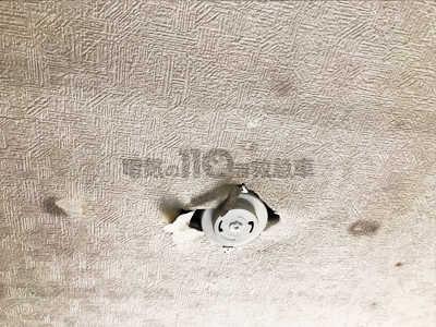 シーリングを取付けた天井
