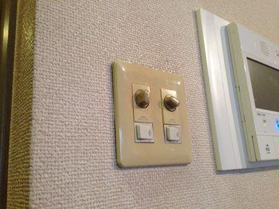 一般的な調光スイッチ